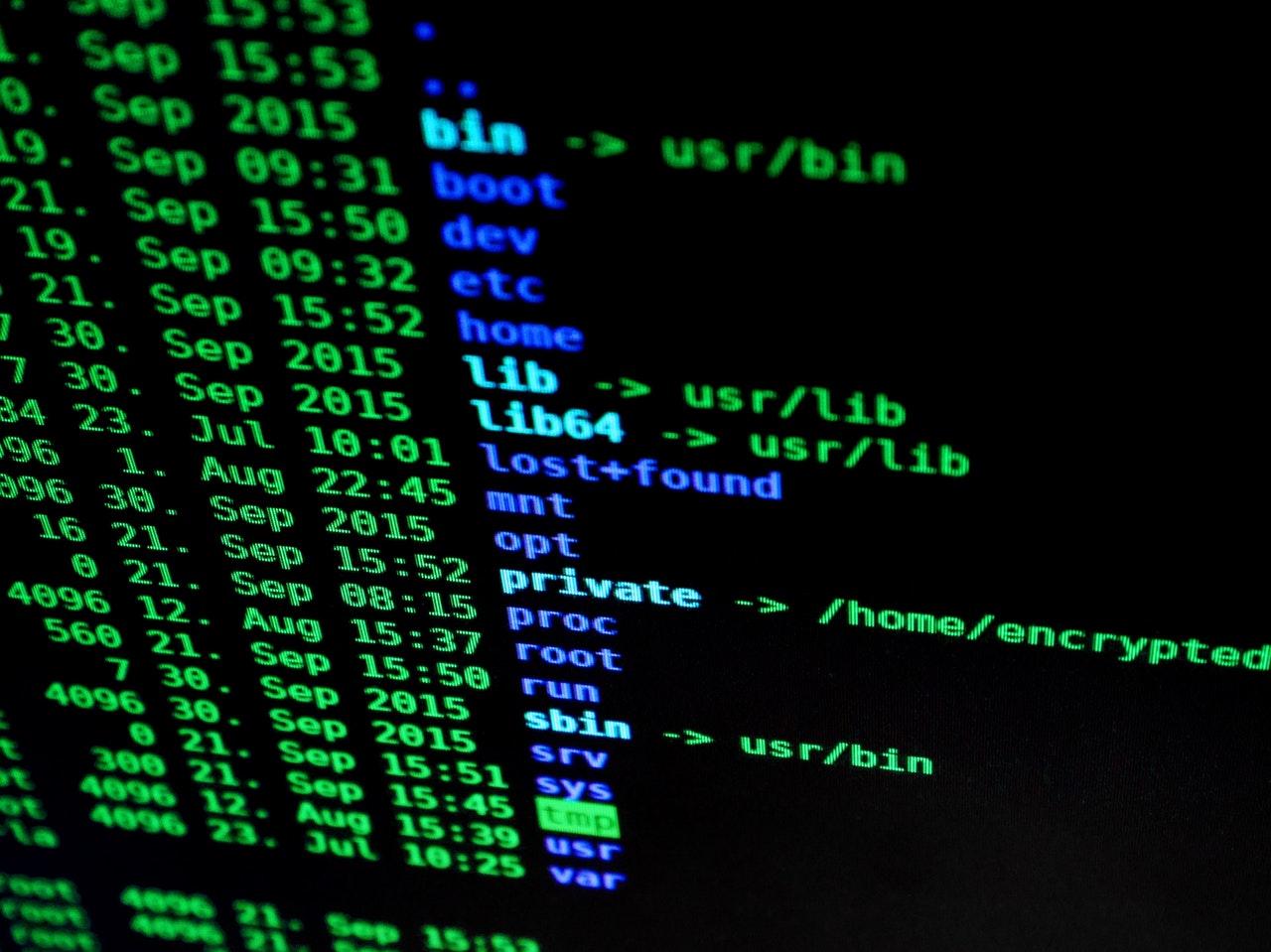 firewall or anti virus